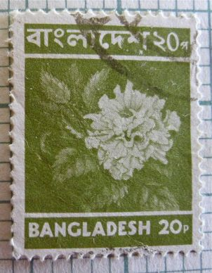 Bangladesh floral stamp - species unknown