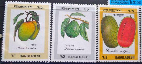 Bangladesh stamps - Mango, Mangifera indica; guava, Psidium guajava; watermelon, Citrullus vulgaris