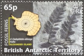 British Antarctic Territory - fossil plants, a species similar to Cladophlebis oblonga