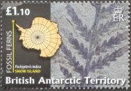 British Antarctic Territory - fossil plants, Pachypteris indica