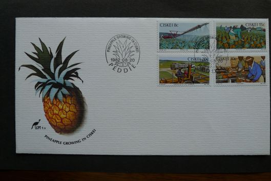 Ciskei, conventional pineapple growing, first day cover, 1982
