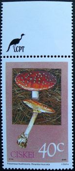 Ciskei, Poisonous mushrooms, Amanita muscaria, 1988