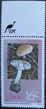 Ciskei, Poisonous mushrooms, Amanita phalloides, 1988