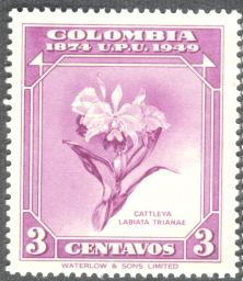 Columbia, orchids, Cattleya labiata trianae, 1949
