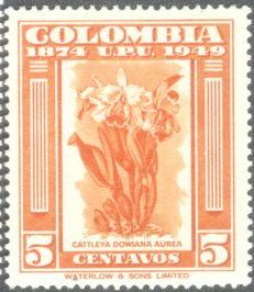 Columbia, orchids, Cattleya dowiana aurea, 1949