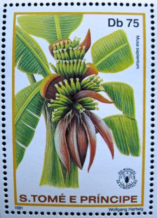 Republic of São Tomé and Príncipe, banana, Musa x sapientum, 1981