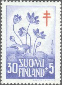 Finland, flora, Anemone hepatica, 1958