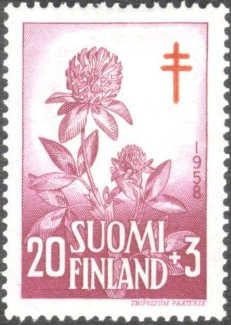 Finland, flora, Trifolium pratense, 1958