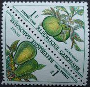 Gabon - Avocado, mandarin