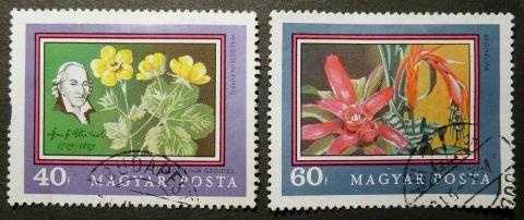 Hungary: Waldsteinia geoides & Bromeliaceae