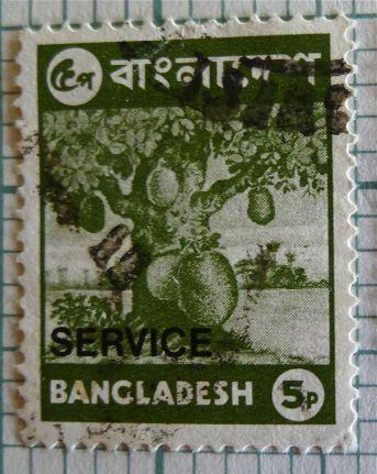 Bangladesh stamp - jackfruit, Artocarpus heterophyllus