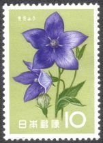 Japan, flowers, Campanula