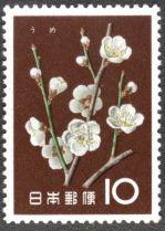 Japan, flowers, Cherry