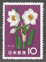Japan, flowers, Jonquil