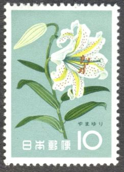 Japan, flowers, Lilium