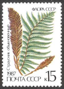 Russia, ferns 1987