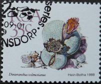 South Africa, Dinteranthus wilmotianus, 1988