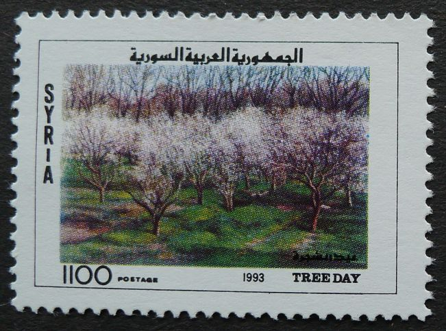 Syria, Tree Day, 1993