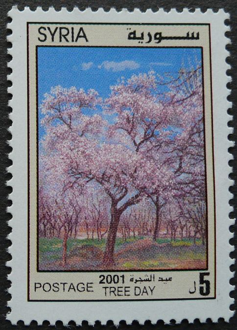 Syria, Tree Day, 2001
