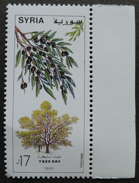 Syria, Tree Day, Olive, 1995