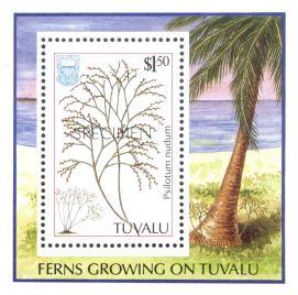 Tuvalu, Fork fern, Psilotum nudum