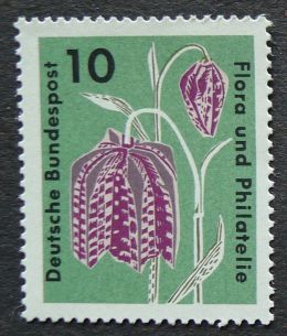 West Germany, Fritillaria meleagris