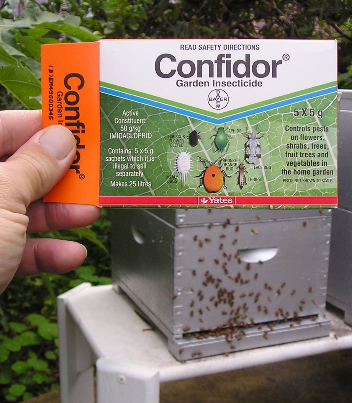 Confidor: instructions for use. Destroy all pests 54