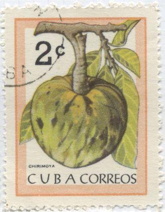 Cuba - Cherimoya, Annona cherimona