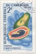 Cameroon - Carica papaya, pawpaw