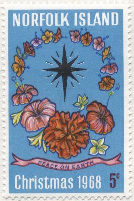 Norfolk Island - Hibiscus, Hibiscus rosa-sinensis