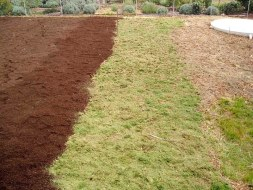 Then woodland mulch, grass clippings and mushroom compost - all this layering took about five days...