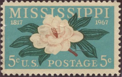 USA - Magnolia grandiflora, Bull Bay magnolia