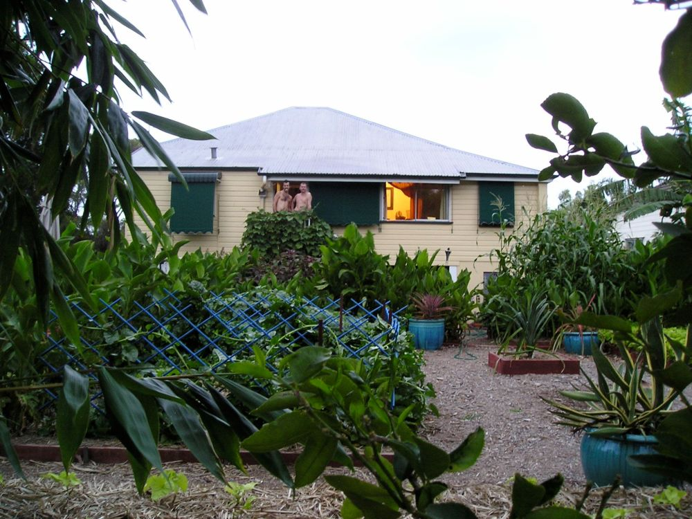 A view of the house from under the bamboo. The lush foliage is masking the reality of a poor wet season