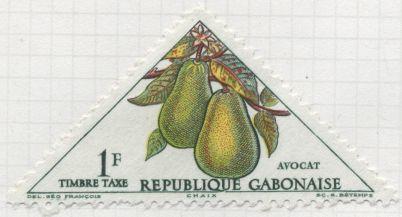 Gabon - Persea americanum, avocado
