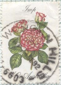 UK - Rosa, Imp
