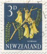 New Zealand, Kowhai, Sophora microphylla