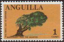 Anguilla- mahogany, Swietenia macrophylla