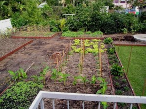 Vegetable garden almost complete May '05
