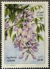 Algeria, probably Wisteria sinensis, 2011