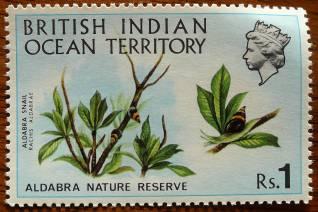 British Indian Ocean Territory, Aldabra snail, Rachis aldabrae, 1971