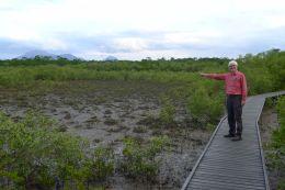 Mick Fanning (vision) ABC TV does some tropical salt-marsh spotting