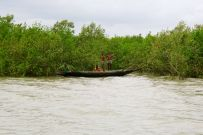 Sundarban National Park, Bangladesh