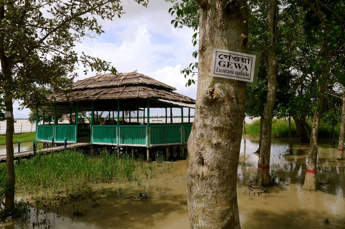 Interpretation centre, Sundarban National Park, Bangladesh