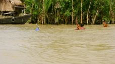 Rich fishing - just outside the Sundarban National Park, Bangladesh