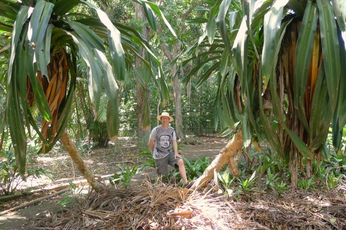 PNG is the world capital of the Pandanus landscapes