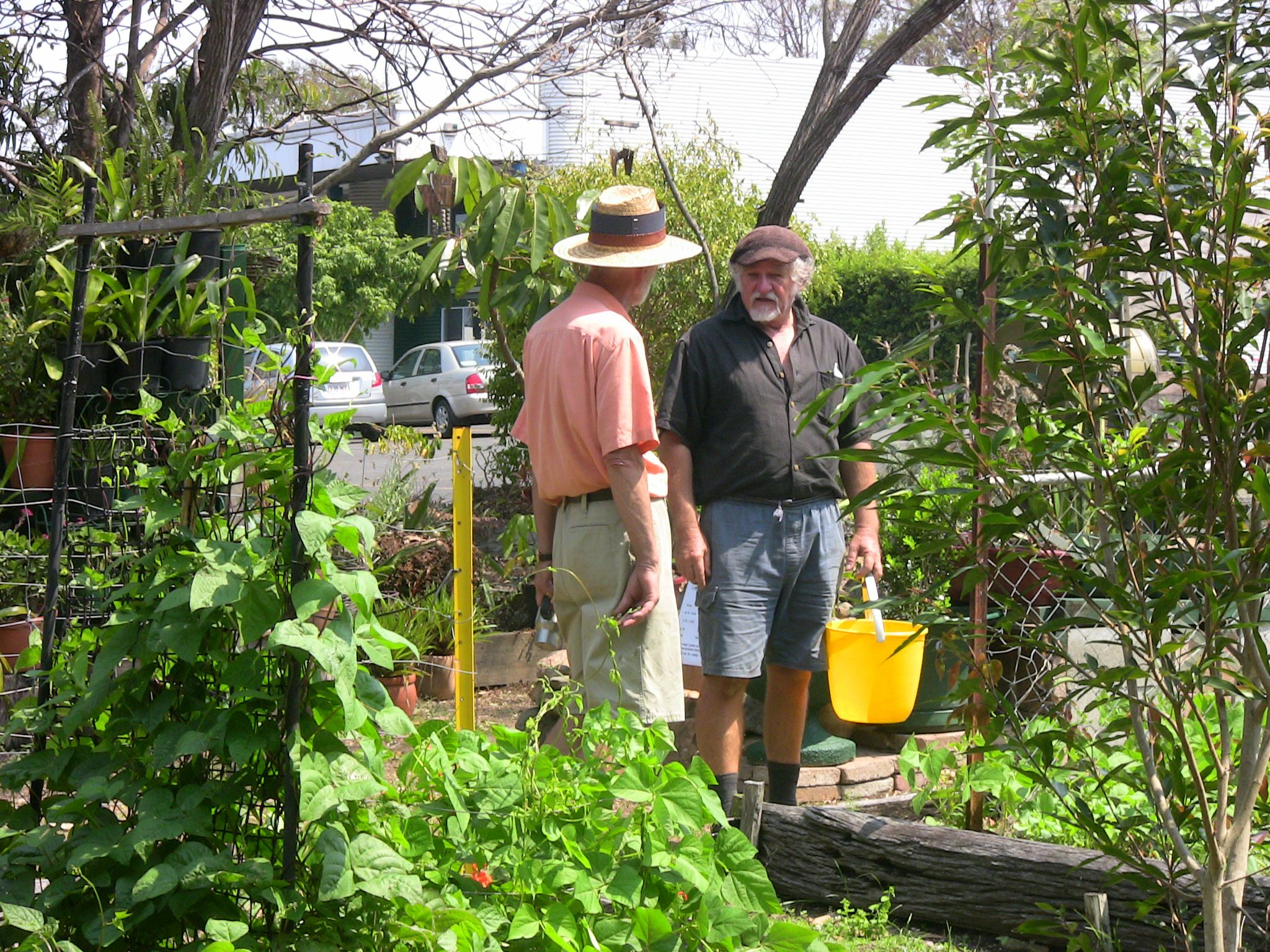 True grit tough love gardening in queensland s runcorn for Gardening tools brisbane