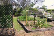 Kyabra Street Community Garden