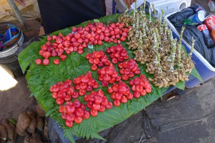 Peanut and laulau fruit (Syzygium aqueum) on a beautifully crafted tablecloth of banana leaves and tree fern fronds. Manu Market
