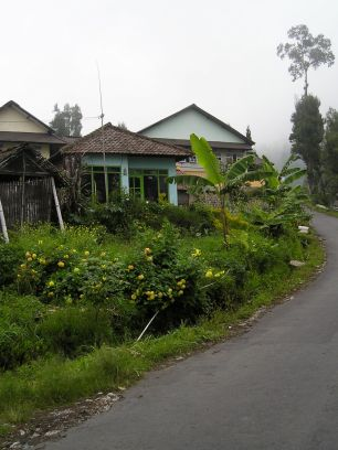 The main road that winds up to Cemoro Lawang and Gunung (Mt) Bromo.
