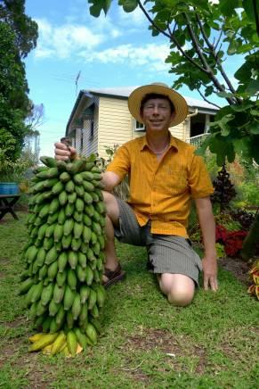 Sweetest bananas: Musa x sapientum 'Pisang Ceylan'